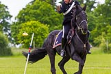 The Light Cavalry HAC Annual Review and Inspection 2013. Windsor Great Park Review Ground, Windsor, Berkshire, United Kingdom, on 09 June 2013 at 15:01, image #608