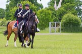 The Light Cavalry HAC Annual Review and Inspection 2013. Windsor Great Park Review Ground, Windsor, Berkshire, United Kingdom, on 09 June 2013 at 15:03, image #613