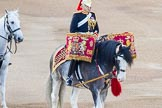 Beating Retreat 2014. Horse Guards Parade, Westminster, London SW1A,  United Kingdom, on 11 June 2014 at 20:16, image #72