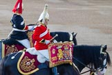 Beating Retreat 2014. Horse Guards Parade, Westminster, London SW1A,  United Kingdom, on 11 June 2014 at 20:25, image #101