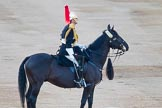 Beating Retreat 2014. Horse Guards Parade, Westminster, London SW1A,  United Kingdom, on 11 June 2014 at 20:42, image #169