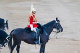 Beating Retreat 2014. Horse Guards Parade, Westminster, London SW1A,  United Kingdom, on 11 June 2014 at 20:42, image #170