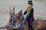 Beating Retreat 2014. Horse Guards Parade, Westminster, London SW1A,  United Kingdom, on 11 June 2014 at 20:50, image #215