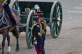 Beating Retreat 2014. Horse Guards Parade, Westminster, London SW1A,  United Kingdom, on 11 June 2014 at 20:51, image #220