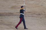 Beating Retreat 2014. Horse Guards Parade, Westminster, London SW1A,  United Kingdom, on 11 June 2014 at 21:19, image #304