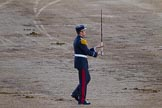 Beating Retreat 2014. Horse Guards Parade, Westminster, London SW1A,  United Kingdom, on 11 June 2014 at 21:19, image #306