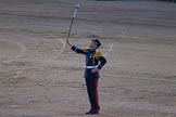 Beating Retreat 2014. Horse Guards Parade, Westminster, London SW1A,  United Kingdom, on 11 June 2014 at 21:20, image #315