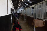 The Light Cavalry HAC Annual Review and Inspection 2014. Flemish Farm, Windsor Great Park,    on 12 October 2014 at 09:23, image #3