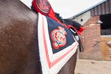The Light Cavalry HAC Annual Review and Inspection 2014. Flemish Farm, Windsor Great Park,    on 12 October 2014 at 09:46, image #12