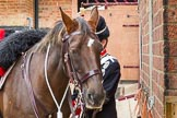 The Light Cavalry HAC Annual Review and Inspection 2014. Flemish Farm, Windsor Great Park,    on 12 October 2014 at 10:19, image #27