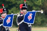 The Light Cavalry HAC Annual Review and Inspection 2014. Guards Polo Club. Windsor Great Park,    on 12 October 2014 at 12:38, image #76