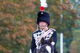 The Light Cavalry HAC Annual Review and Inspection 2014. Guards Polo Club. Windsor Great Park,    on 12 October 2014 at 12:39, image #77