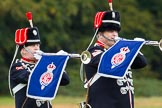 The Light Cavalry HAC Annual Review and Inspection 2014. Guards Polo Club. Windsor Great Park,    on 12 October 2014 at 12:39, image #80