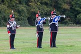 The Light Cavalry HAC Annual Review and Inspection 2014. Guards Polo Club. Windsor Great Park,    on 12 October 2014 at 12:40, image #81