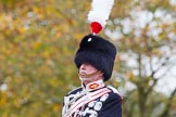 The Light Cavalry HAC Annual Review and Inspection 2014. Guards Polo Club. Windsor Great Park,    on 12 October 2014 at 12:41, image #85