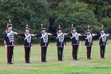 The Light Cavalry HAC Annual Review and Inspection 2014. Guards Polo Club. Windsor Great Park,    on 12 October 2014 at 12:43, image #90