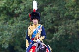 The Light Cavalry HAC Annual Review and Inspection 2014. Guards Polo Club. Windsor Great Park,    on 12 October 2014 at 12:50, image #106