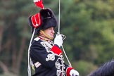 The Light Cavalry HAC Annual Review and Inspection 2014. Guards Polo Club. Windsor Great Park,    on 12 October 2014 at 12:51, image #113