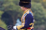 The Light Cavalry HAC Annual Review and Inspection 2014. Guards Polo Club. Windsor Great Park,    on 12 October 2014 at 12:52, image #116