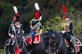 The Light Cavalry HAC Annual Review and Inspection 2014. Guards Polo Club. Windsor Great Park,    on 12 October 2014 at 12:59, image #139