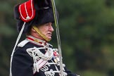 The Light Cavalry HAC Annual Review and Inspection 2014. Guards Polo Club. Windsor Great Park,    on 12 October 2014 at 13:00, image #148