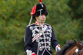 The Light Cavalry HAC Annual Review and Inspection 2014. Guards Polo Club. Windsor Great Park,    on 12 October 2014 at 13:04, image #166