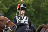 The Light Cavalry HAC Annual Review and Inspection 2014. Guards Polo Club. Windsor Great Park,    on 12 October 2014 at 13:04, image #170