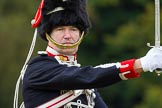 The Light Cavalry HAC Annual Review and Inspection 2014. Guards Polo Club. Windsor Great Park,    on 12 October 2014 at 13:04, image #171