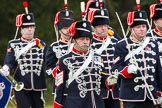 The Light Cavalry HAC Annual Review and Inspection 2014. Guards Polo Club. Windsor Great Park,    on 12 October 2014 at 13:05, image #177