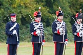 The Light Cavalry HAC Annual Review and Inspection 2014. Guards Polo Club. Windsor Great Park,    on 12 October 2014 at 13:10, image #197
