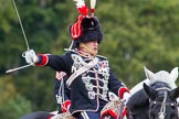 The Light Cavalry HAC Annual Review and Inspection 2014. Guards Polo Club. Windsor Great Park,    on 12 October 2014 at 13:11, image #202