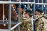The Light Cavalry HAC Annual Review and Inspection 2014. Guards Polo Club. Windsor Great Park,    on 12 October 2014 at 13:35, image #212