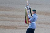 Beating Retreat 2015 - Waterloo 200. Horse Guards Parade, Westminster, London,  United Kingdom, on 10 June 2015 at 20:40, image #169
