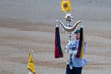Beating Retreat 2015 - Waterloo 200. Horse Guards Parade, Westminster, London,  United Kingdom, on 10 June 2015 at 20:40, image #170