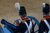 Beating Retreat 2015 - Waterloo 200. Horse Guards Parade, Westminster, London,  United Kingdom, on 10 June 2015 at 21:18, image #304