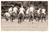 7th Heritage Polo Cup semi-finals: La Mariposa v La Golondrina.. Hurtwood Park Polo Club, Ewhurst Green, Surrey, United Kingdom, on 04 August 2012 at 15:46, image #275