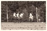 7th Heritage Polo Cup semi-finals: La Mariposa v La Golondrina.. Hurtwood Park Polo Club, Ewhurst Green, Surrey, United Kingdom, on 04 August 2012 at 15:46, image #276