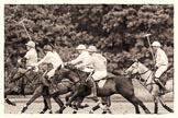7th Heritage Polo Cup semi-finals: La Mariposa v La Golondrina, Timothy Rose riding forward.. Hurtwood Park Polo Club, Ewhurst Green, Surrey, United Kingdom, on 04 August 2012 at 15:46, image #277