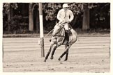 7th Heritage Polo Cup semi-finals: La Golondrina Argentina Pedro Harrison turning his mare back to play.. Hurtwood Park Polo Club, Ewhurst Green, Surrey, United Kingdom, on 04 August 2012 at 15:47, image #283