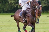7th Heritage Polo Cup semi-finals: Pepe Riglos La Golondrina Argentina.. Hurtwood Park Polo Club, Ewhurst Green, Surrey, United Kingdom, on 04 August 2012 at 16:56, image #340