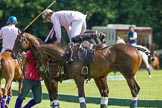 7th Heritage Polo Cup finals: Nico Talamoni changing ponies.. Hurtwood Park Polo Club, Ewhurst Green, Surrey, United Kingdom, on 05 August 2012 at 15:38, image #183