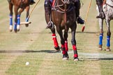 African Patrons Cup 2012 (Friday). Fifth Chukker Polo & Country Club, Kaduna, Kaduna State, Nigeria, on 02 November 2012 at 15:42, image #33