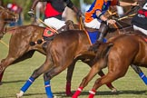 African Patrons Cup 2012 (Friday). Fifth Chukker Polo & Country Club, Kaduna, Kaduna State, Nigeria, on 02 November 2012 at 16:07, image #75