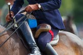 DBPC Polo in the Park 2013, side saddle riding demonstration by the The Side Saddle Association.. Dallas Burston Polo Club, , Southam, Warwickshire, United Kingdom, on 01 September 2013 at 12:58, image #259
