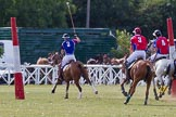 DBPC Polo in the Park 2013. Dallas Burston Polo Club, , Southam, Warwickshire, United Kingdom, on 01 September 2013 at 14:37, image #412
