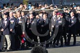 Remembrance Sunday 2012 Cenotaph March Past: Group E45 - Combat Stress.. Whitehall, Cenotaph, London SW1,  United Kingdom, on 11 November 2012 at 11:44, image #369