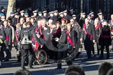 Remembrance Sunday 2012 Cenotaph March Past: Group F14 - National Pigeon War Service.. Whitehall, Cenotaph, London SW1,  United Kingdom, on 11 November 2012 at 11:47, image #491