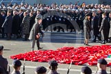 Remembrance Sunday 2012 Cenotaph March Past: Wreaths are placed at the western side of the Cenotaph during the March Past, creating a field of red poppies.. Whitehall, Cenotaph, London SW1,  United Kingdom, on 11 November 2012 at 11:53, image #763