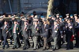 Remembrance Sunday 2012 Cenotaph March Past: Group  B11 - Royal Dragoon Guards .. Whitehall, Cenotaph, London SW1,  United Kingdom, on 11 November 2012 at 11:56, image #865