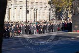 Columns of ex-Srevicemen and women, organized by the Royal British Legion, are moving forward towards the Cenotaph for the march past.
